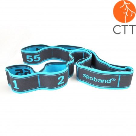 SPOBAND elastic Band in 5 different colors and strengths