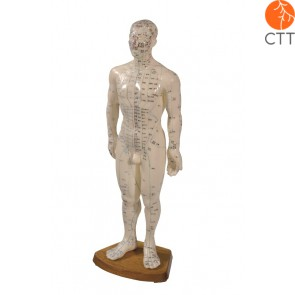 Classic-male model male softrplastik 60cm