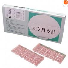 Dongbang press needle with plaster, DB 130, 0.20 x 1.0 mm, 100 pcs