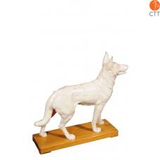 Dog Model 31 x 28 x 8cm