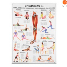 Stretching III, 70  x 100 cm, instruction, in German, plastified, 70x100cm