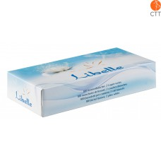 100 facial tissues per box, 2 plies white